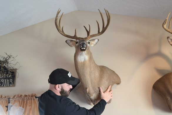 Timber-Loc Big Game Wall Mounting System