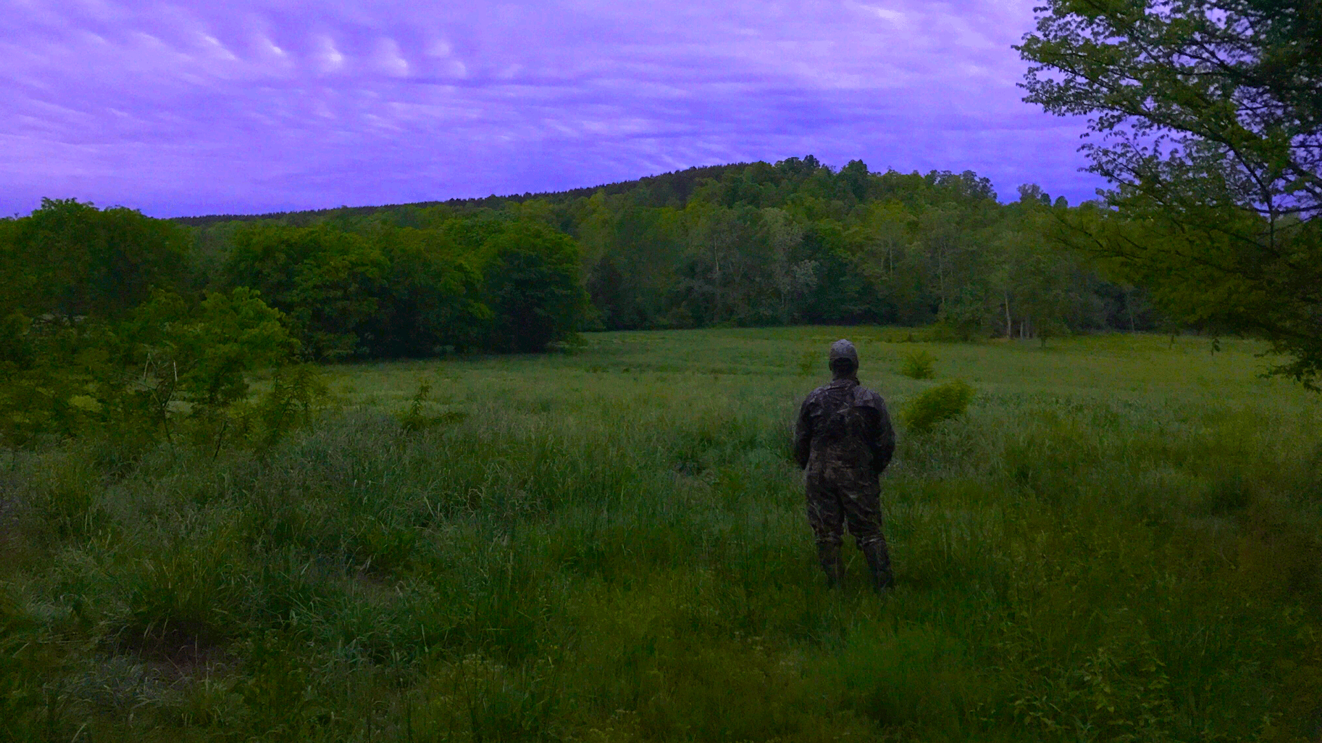 hunter in field listening for gobbles