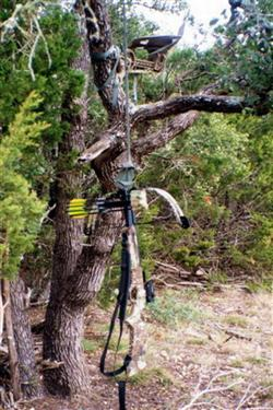 ~Crossbows02-03 (Custom) (Custom).jpg
